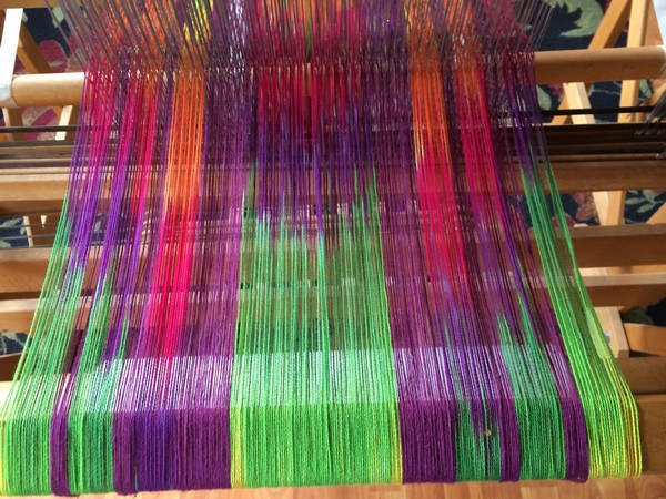 a new warp on the loom